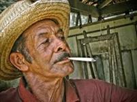 CIGARRO DE PALHA ARTESANAL COMPRO EM GRANDES QUANTIDADES PAGAMENTO A VISTA DE QUALIDADE.