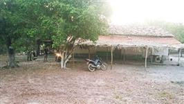 Fazenda de 69 hectares em Caxias-MA