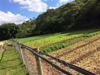 Sitio de 5 hectares
