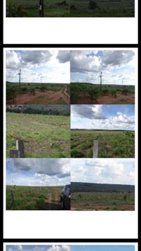 Fazenda 6350hec Dupla Aptidão MT