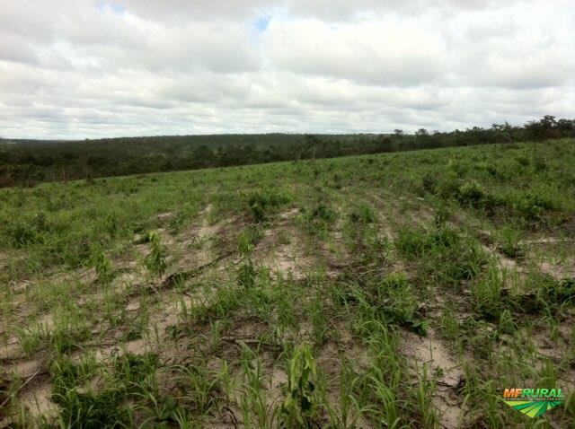 Fazenda no mato grosso vendo permuta 1730 hectares