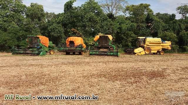 Tercerizaçao de colheita