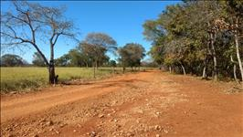 FAZENDA - 1.190 hectares - REGIÃO CORINTO (MG)