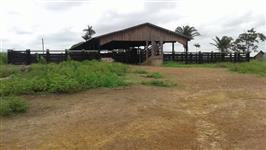 Fazenda em Pacajá-PA