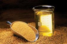 Procuro Fornecedor de Óleo de Soja Refinado para Exportação. Destino: Coréia do Sul
