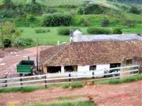 Fazenda em Itaverava - Minas Gerais