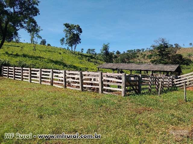 Fazenda São Roque