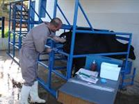 Técnico em Agropecuária