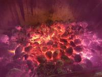 Carvão de Coco Babaçu