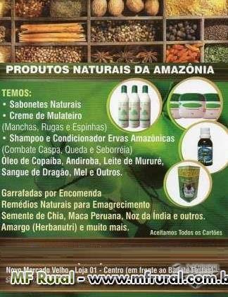 ÓLEO DE COPAÍBA, ANDIROBA, SANGUE DE DRAGÃO DIRETO DA AMAZÔNIA/ ACRE - AMAZONAS