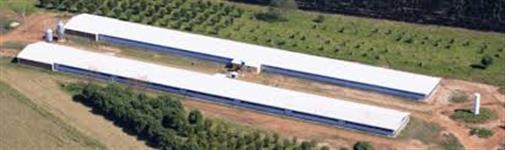 Estou a procura de granja em Uberlândia