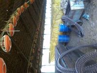 Linhas de comedores Casp com 430 metros de tuboflex