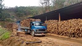 Carvão para churrasco, lenha de eucalipto