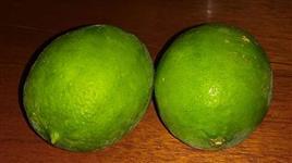 Limão Tahiti e limão rosa
