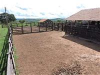 Fazenda Funil em Bonfinópolis