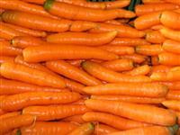 Procuro produtor de Cenoura