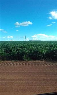 Fazendas nortao do mato grosso