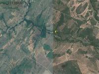 Fazenda 764 hectares