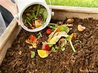 Minhocas para pesca e compostagem