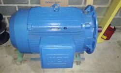 motor elétrico WEG flangeado 175 cv