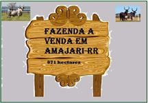 Fazenda em Amajari-RR