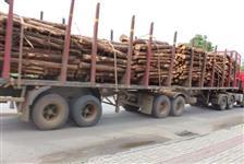 Contratação de frete caminhão com fueiros