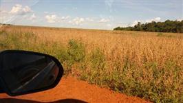 Fazenda entre  (Caçu/Jatai) – GO