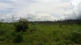 Fazenda Souza Nunes Anapu-Pa
