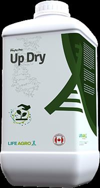 UP DRY 1Kg