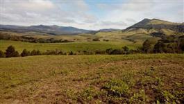 Fazenda de 64 alq em Tamarana por 3.500.000,00