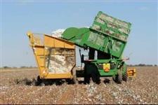 Maquina de algodão 9970