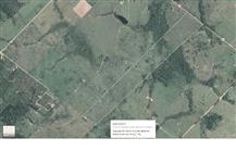 Lote de 23 Alqueires/55,66 ha em Jaru - RO