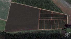 Sítio (terra roxa), com água e reserva 11,5 alqueires paulista