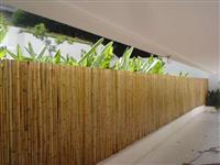 venda de bambu no rio de janeiro.bambu na barra da tijuca