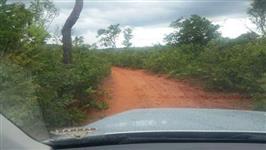 Área para compensação ambiental bioma cerrado