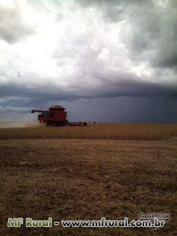 Terceirização de Colheita de soja, milho, trigo, etc, para todo o Brasil