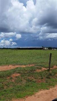 Fazenda de soja e milho à venda no MT
