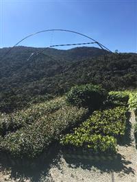 Parque Jussara Ambiental