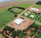 FAZENDA PARA LAVOURAS - 1850 hectares - SÃO GABRIEL DO OESTE (MS)
