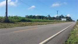 Terra Agricola no Pará 25Ha