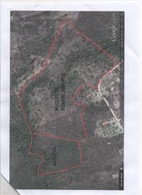 Area rural 24 hectare, lado da Gujão Alim. Centro industrial
