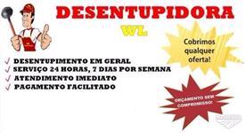 Desenupidora WL