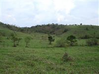 Vende-se fazenda no vale do rio doce em MG