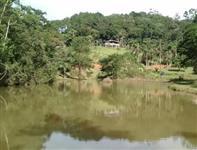 Sítio área de 17 alqueires em Mairiporã