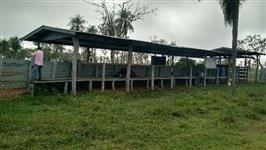 Linda Fazenda no Mato Grosso do Sul