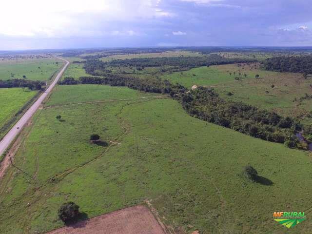 Fazenda em Maraba 252 Alqueires