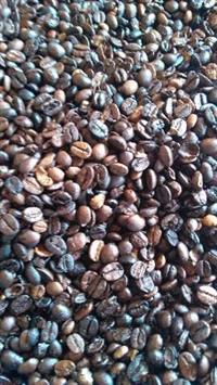 Café torrado , moído ou cru