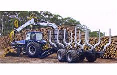 Colheita Florestal Pinus e Eucalyptus