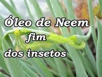OLEO DE NEEM