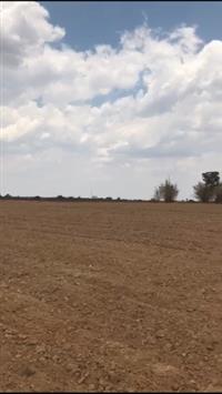 Fazenda para Arrendamento Paranatinga-MT